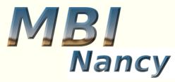 MBI Platform